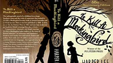 'Huckleberry Finn' and 'To Kill a Mockingbird' Banned from School Curriculum in Duluth, MN