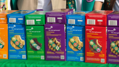 """Anti-LGBT Liberty Counsel Hate Group Attacks the Girl Scouts, Calls Them: """" Politically divisive, pro-abortion organization."""""""