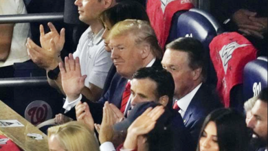 """Donald Trump Greeted with Boos and Chants of """"Lock Him Up!"""" at Game 5 of The World Series [Video]"""